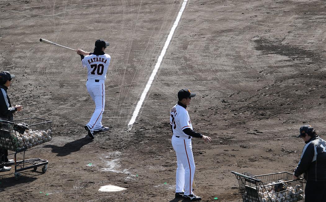 ノックを打つ片岡2軍コーチと川相2軍監督